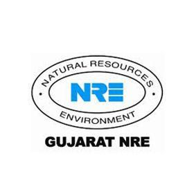 Gujarat NRE Coke Ltd Unlisted Shares